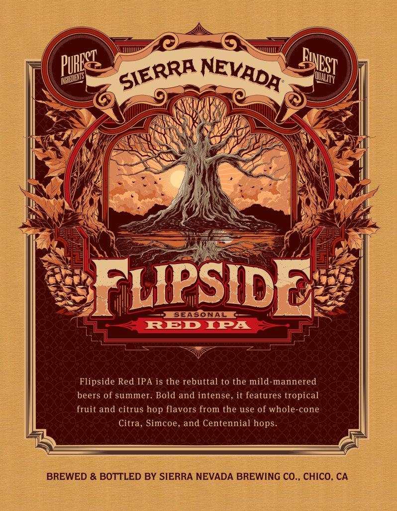 flipside2013_sellsheet_front